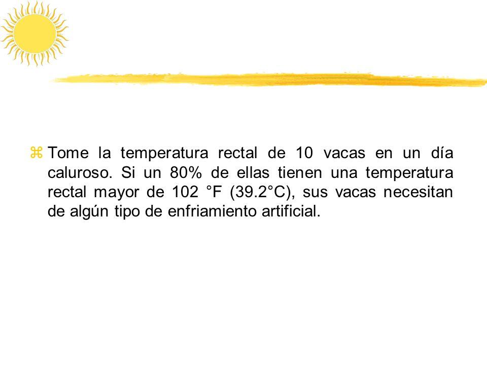 zTome la temperatura rectal de 10 vacas en un día caluroso. Si un 80% de ellas tienen una temperatura rectal mayor de 102 °F (39.2°C), sus vacas neces