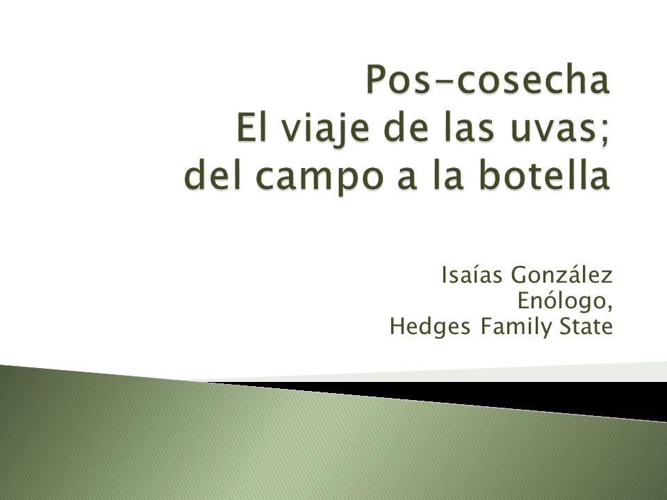 Isaías González Enólogo, Hedges Family State