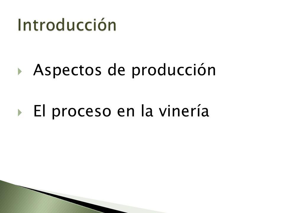 Aspectos de producción El proceso en la vinería