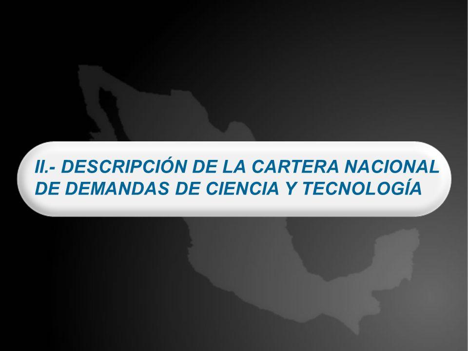 II.- DESCRIPCIÓN DE LA CARTERA NACIONAL DE DEMANDAS DE CIENCIA Y TECNOLOGÍA