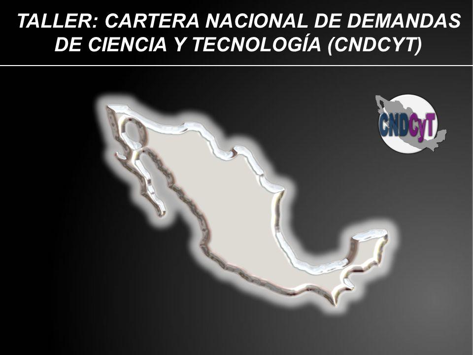 TALLER: CARTERA NACIONAL DE DEMANDAS DE CIENCIA Y TECNOLOGÍA (CNDCYT)