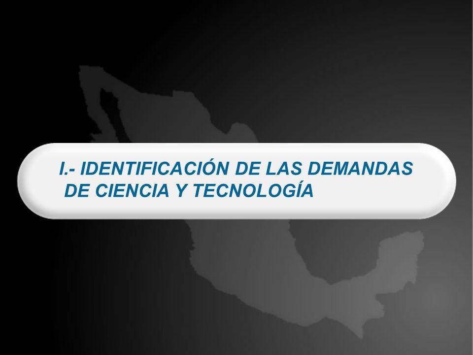 I.- IDENTIFICACIÓN DE LAS DEMANDAS DE CIENCIA Y TECNOLOGÍA