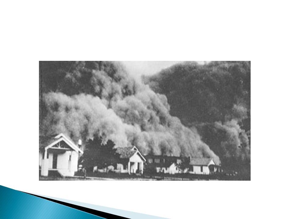 Movimiento ambiental de los 70s Movimiento orgánico de los 80s Mercado global Consolidación de negocios y bancos