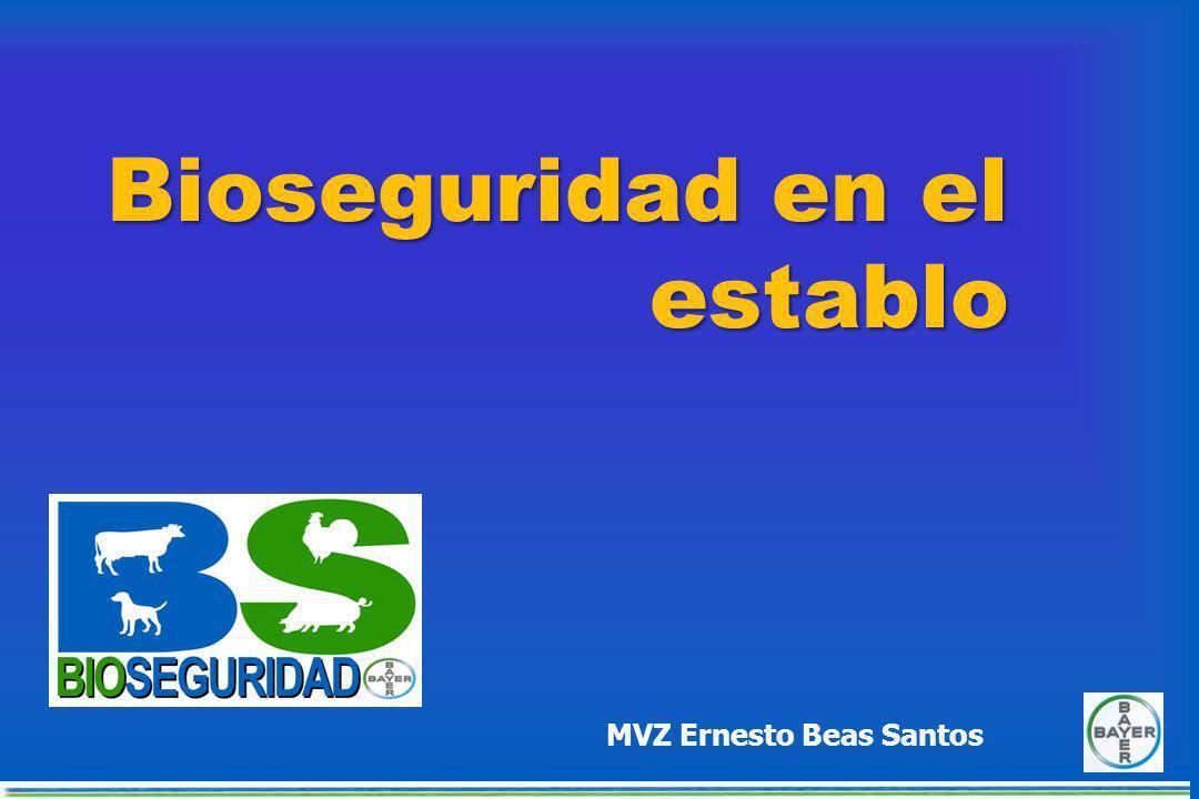 CONTROL DE ROEDORES Cebos en estaciones perimetrales, fijas a intervalos de 10 - 20 metros CONTROL DE ROEDORES Cebos en estaciones perimetrales, fijas a intervalos de 10 - 20 metros