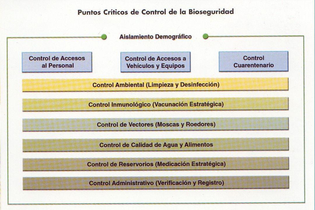 PROGRAMA DE BIOSEGURIDAD INTEGRAL MENOR MORTALIDAD PUNTOS CRITICOS A PUNTOS DE COTROL REDUCCION DE ENFERMEDADES MENOR USO DE MEDICAMENTOS REDUCE ZOONOSIS MEJORA CALIDAD G A N A N C I A S MEJORA PARAMETROS PRODUCTIVOS