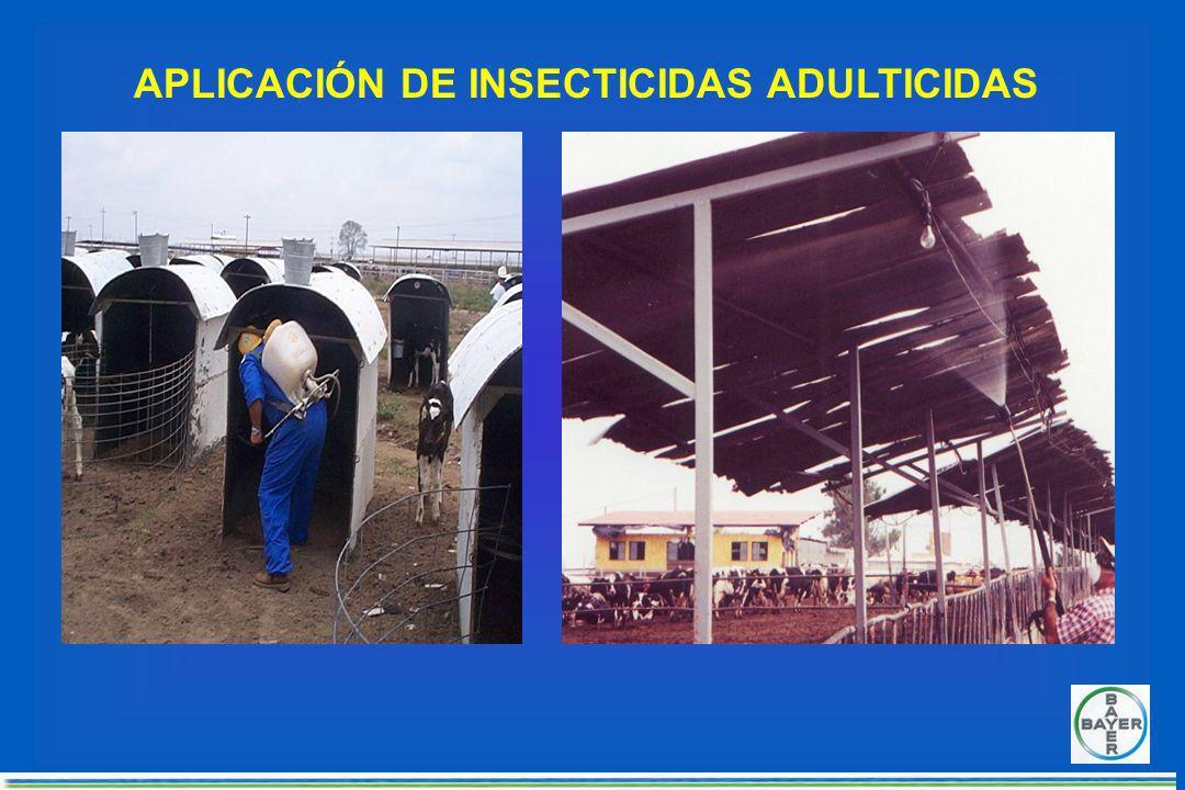 SITIOS DE DESCANSO DIRECTOS INDIRECTOS MOSCASVIVAS EXCREMENTOSREJURGITACIONES