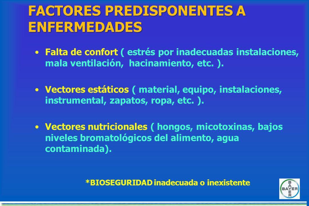 FACTORES PREDISPONENTES A ENFERMEDADES Falta de confort ( estrés por inadecuadas instalaciones, mala ventilación, hacinamiento, etc.