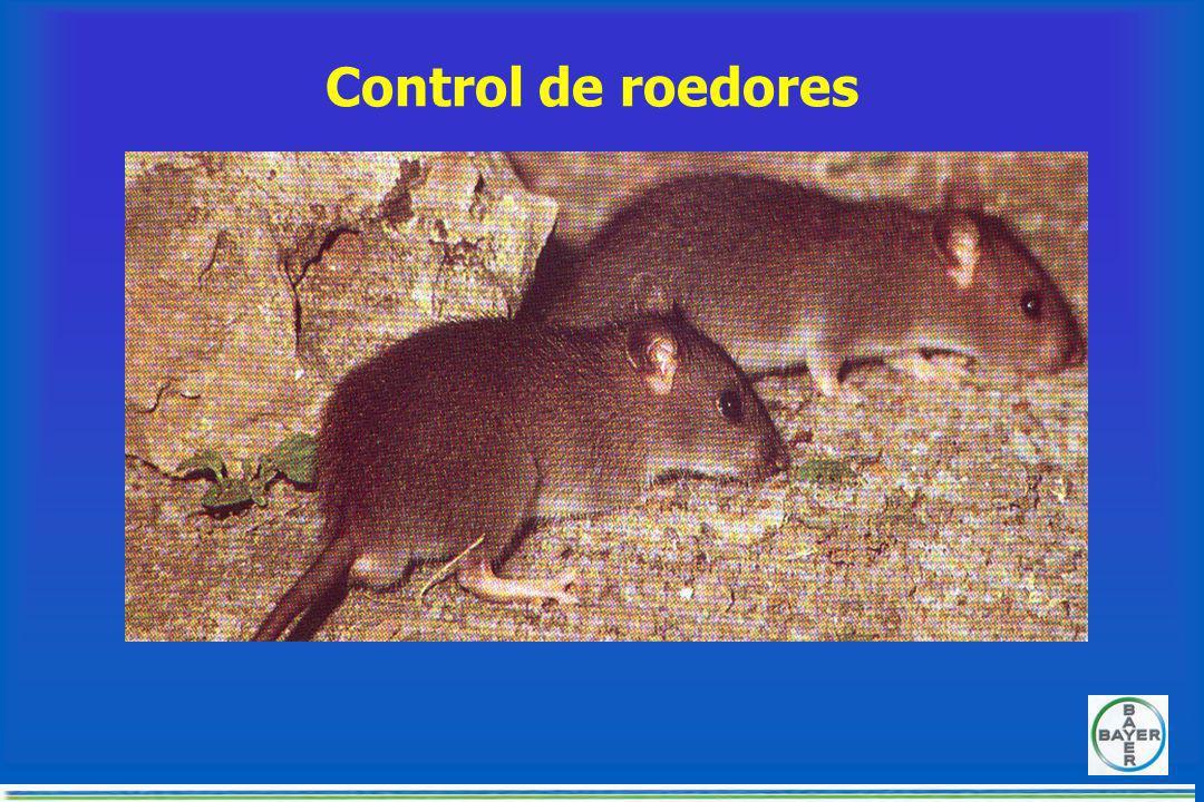CONTROL DE MOSCAS ProductoFrecuenciaAplicación LarvasInhibidores del crecimiento 14 díasAspersión sobre estiércol y materia orgánica con larvas Adulta