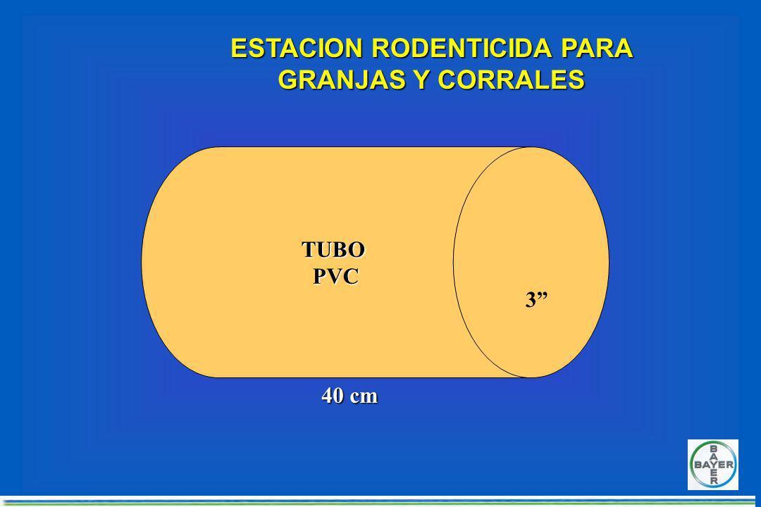 MUROMURO FORMA DE COLOCAR UNA ESTACION RATICIDA VISTA SUPERIOR DE ESTACION RATICIDA (SIN TAPA)