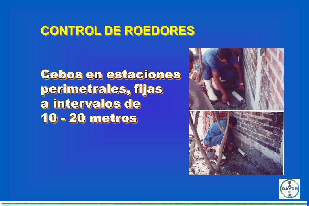 TUBOPVC 3 40 cm ESTACION RODENTICIDA PARA GRANJAS Y CORRALES