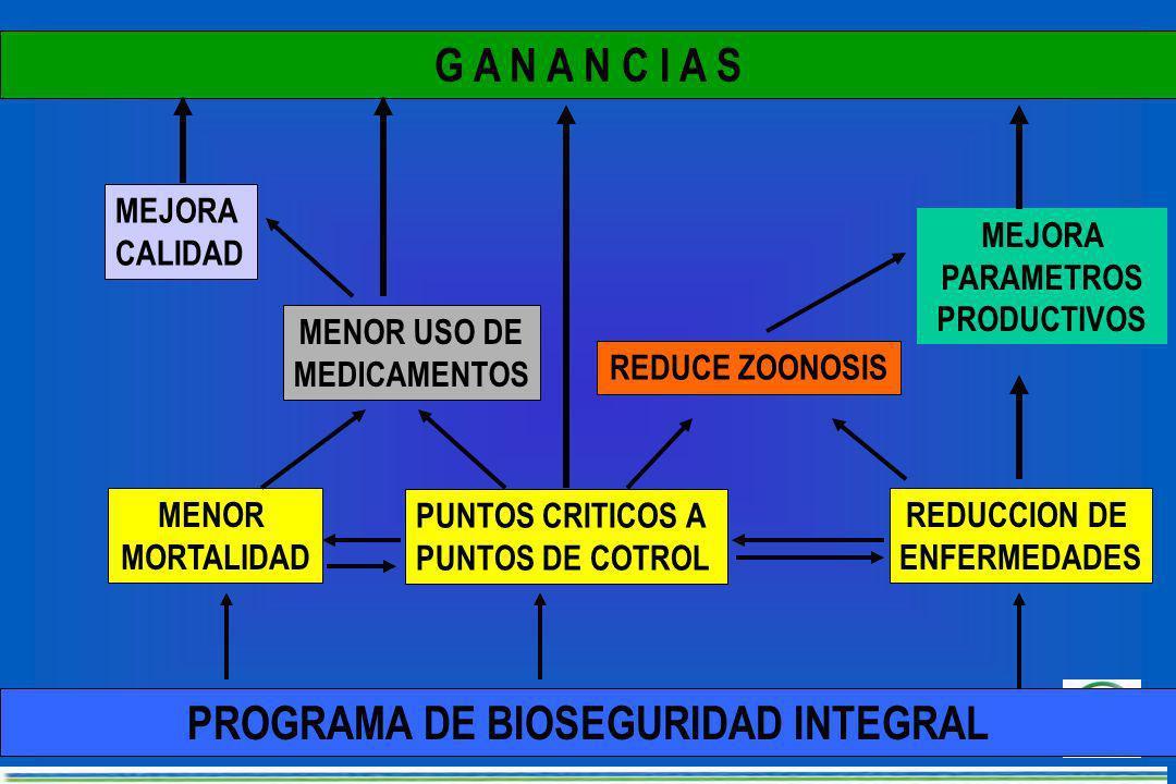 CONTROL DE ROEDORES Cebos en estaciones perimetrales, fijas a intervalos de 10 - 20 metros CONTROL DE ROEDORES Cebos en estaciones perimetrales, fijas