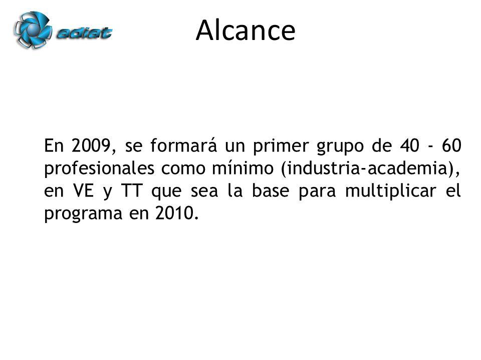 En 2009, se formará un primer grupo de 40 - 60 profesionales como mínimo (industria-academia), en VE y TT que sea la base para multiplicar el programa en 2010.
