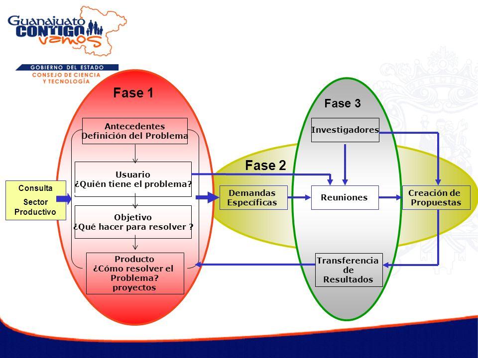 Este programa promociona cambios estructurales a favor de la Innovación y el Desarrollo Tecnológico dentro del ámbito creciente de la integración económica, creando estructuras con mejores prácticas y valores.