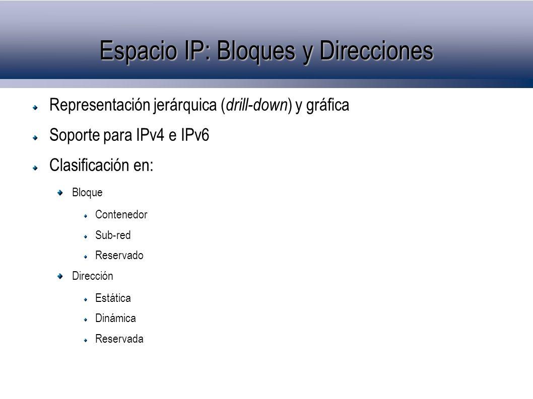 Espacio IP: Bloques y Direcciones Representación jerárquica ( drill-down ) y gráfica Soporte para IPv4 e IPv6 Clasificación en: Bloque Contenedor Sub-