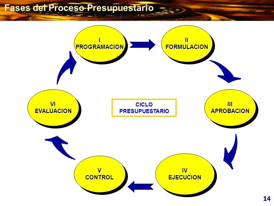 V CONTROL V CONTROL VI EVALUACION VI EVALUACION III APROBACION III APROBACION I PROGRAMACION I PROGRAMACION II FORMULACION II FORMULACION CICLO PRESUP