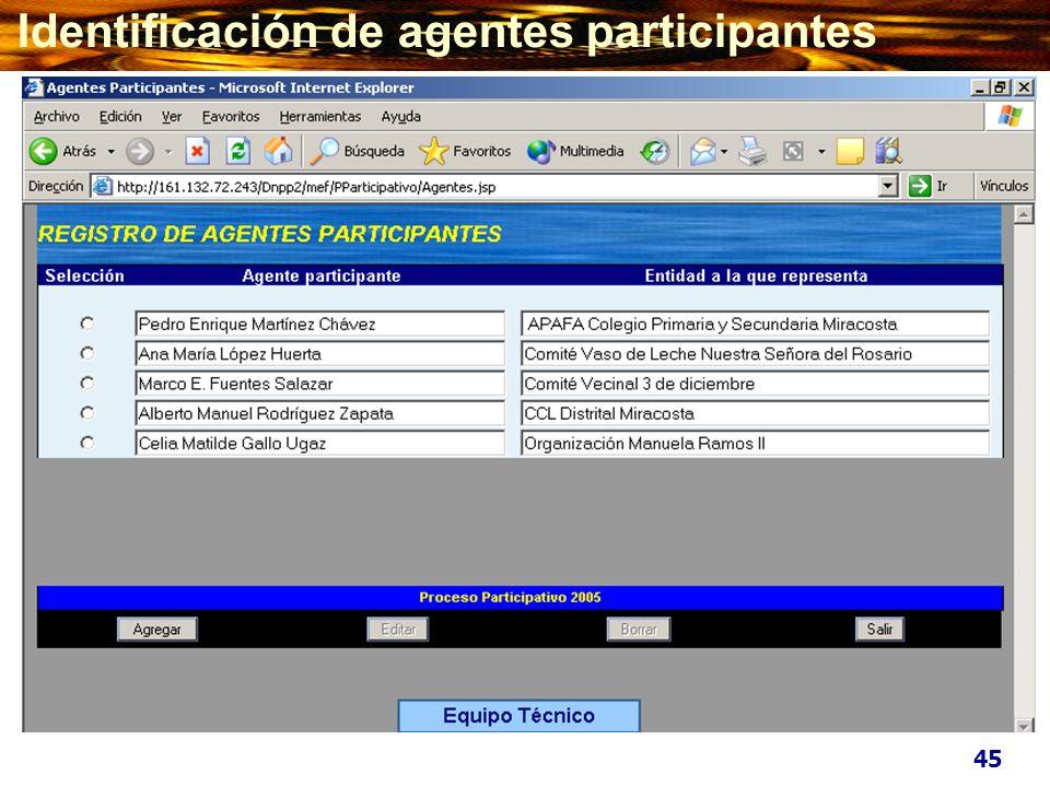 Identificación de agentes participantes 45