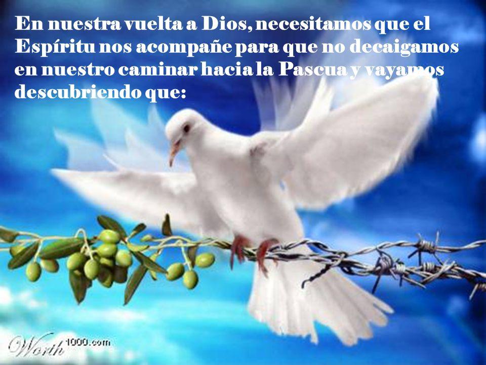 En nuestra vuelta a Dios, necesitamos que el Espíritu nos acompañe para que no decaigamos en nuestro caminar hacia la Pascua y vayamos descubriendo qu