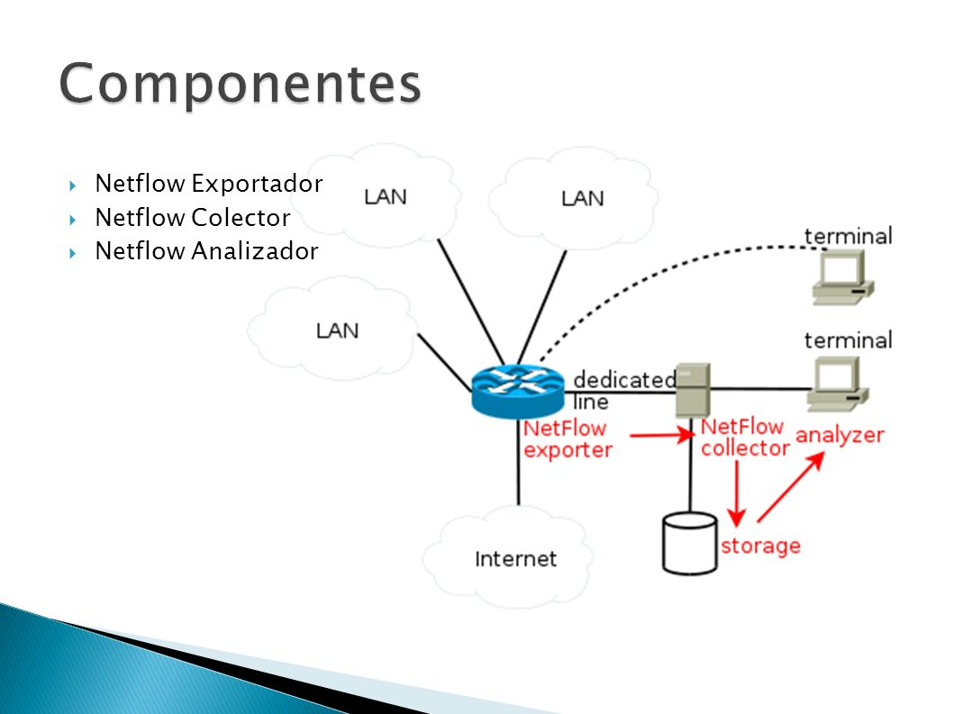 Netflow Exportador Netflow Colector Netflow Analizador