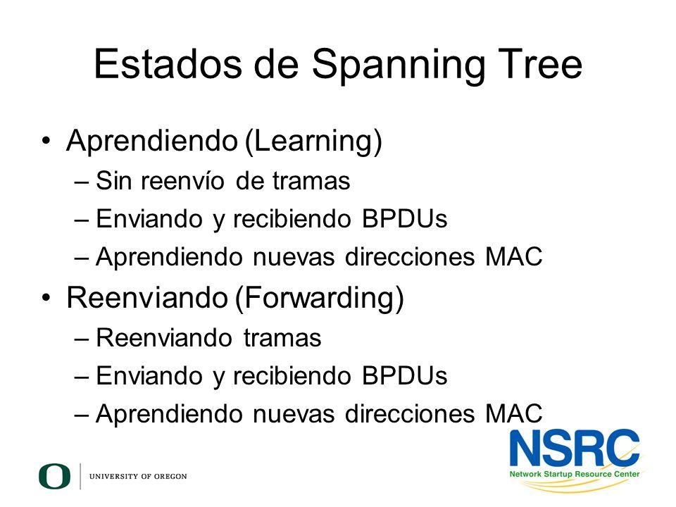 Estados de Spanning Tree Aprendiendo (Learning) –Sin reenvío de tramas –Enviando y recibiendo BPDUs –Aprendiendo nuevas direcciones MAC Reenviando (Fo