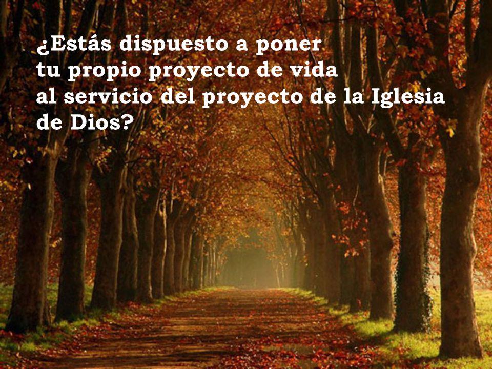 ¿Estás dispuesto a poner tu propio proyecto de vida al servicio del proyecto de la Iglesia de Dios?