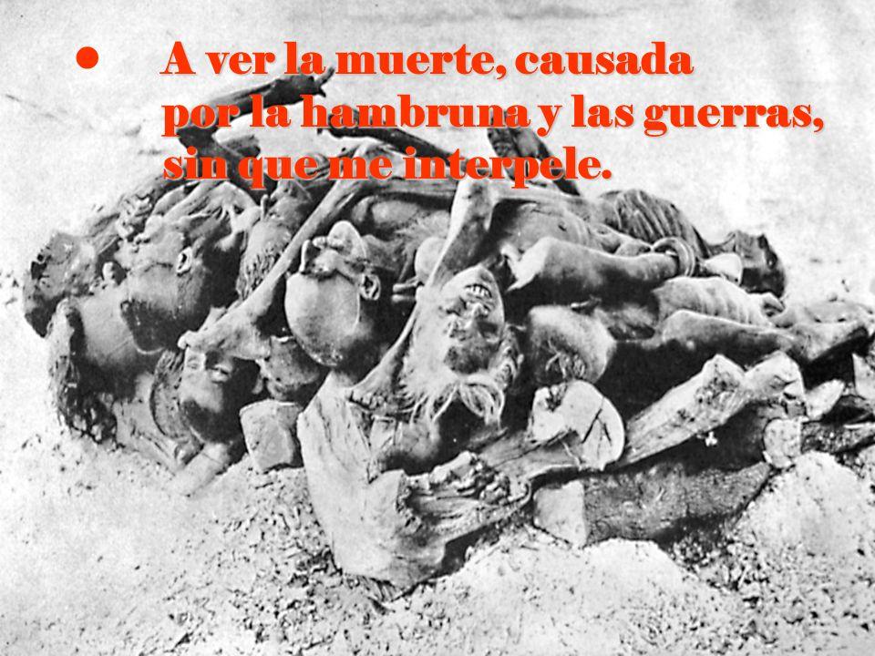 A ver la muerte, causada por la hambruna y las guerras, sin que me interpele.