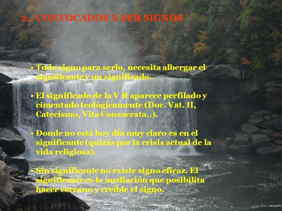Vita Consacrata nos invita a ser signo: de comunión eclesial ( n.42).