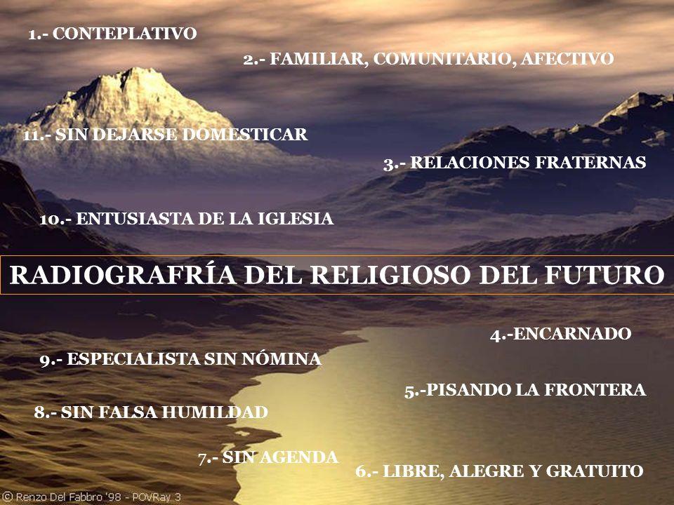 RADIOGRAFRÍA DEL RELIGIOSO DEL FUTURO 1.- CONTEPLATIVO 2.- FAMILIAR, COMUNITARIO, AFECTIVO 3.- RELACIONES FRATERNAS 4.-ENCARNADO 5.-PISANDO LA FRONTER