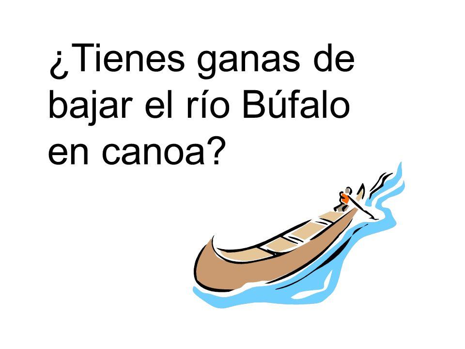 ¿Tienes ganas de bajar el río Búfalo en canoa?