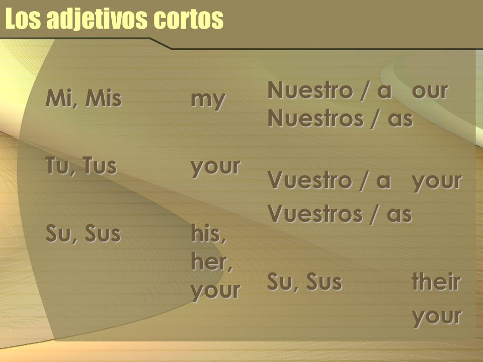 Los adjetivos cortos Mi, Mismy Tu, Tus your Su, Sus his, her, your Nuestro / a our Nuestros / as Vuestro / a your Vuestros / as Su, Sus their your