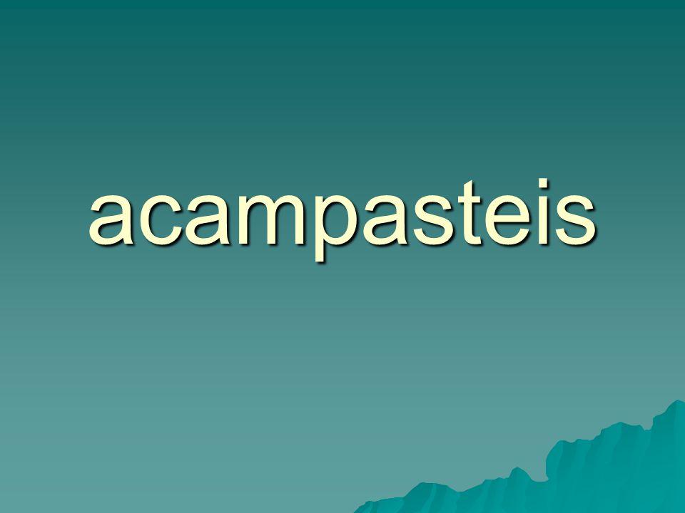 acampasteis