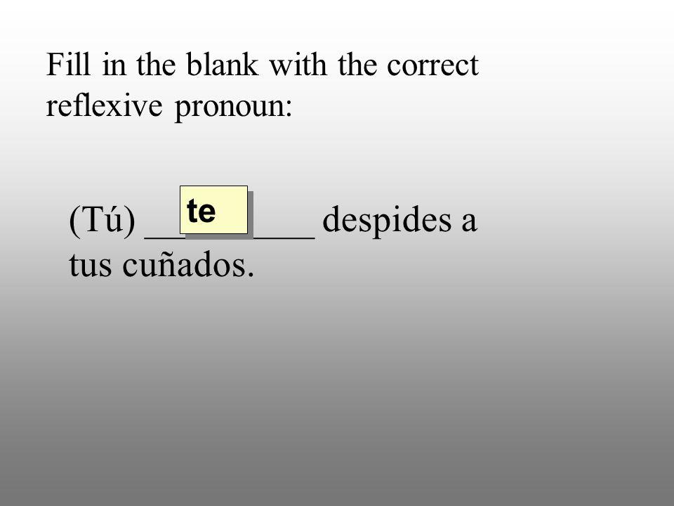 Fill in the blank with the correct reflexive pronoun: (Tú) _________ despides a tus cuñados. te