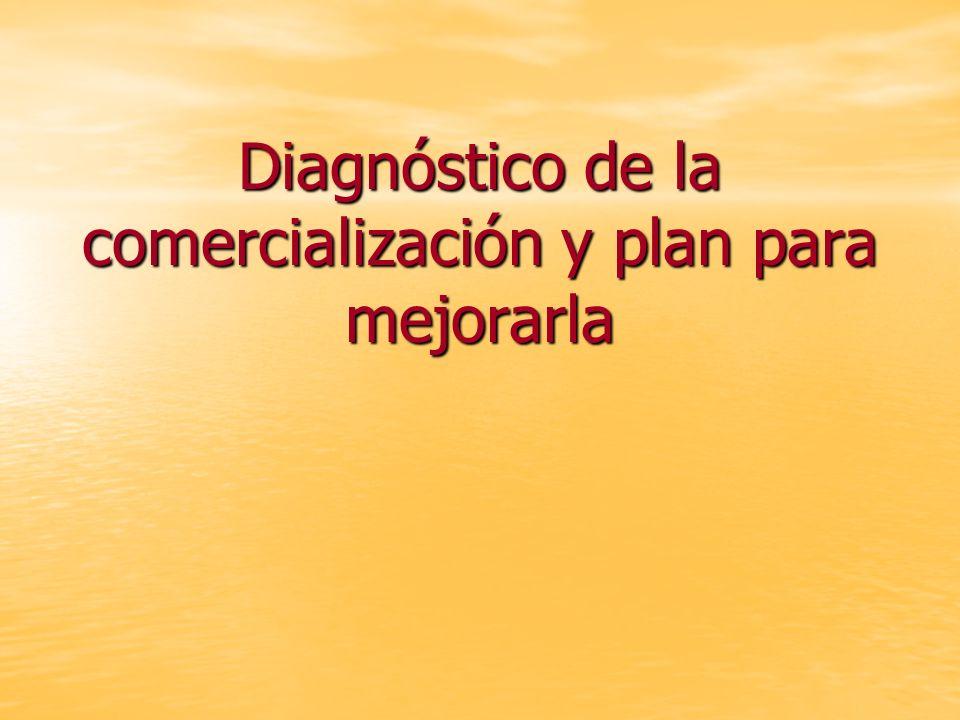 Diagnóstico de la comercialización y plan para mejorarla