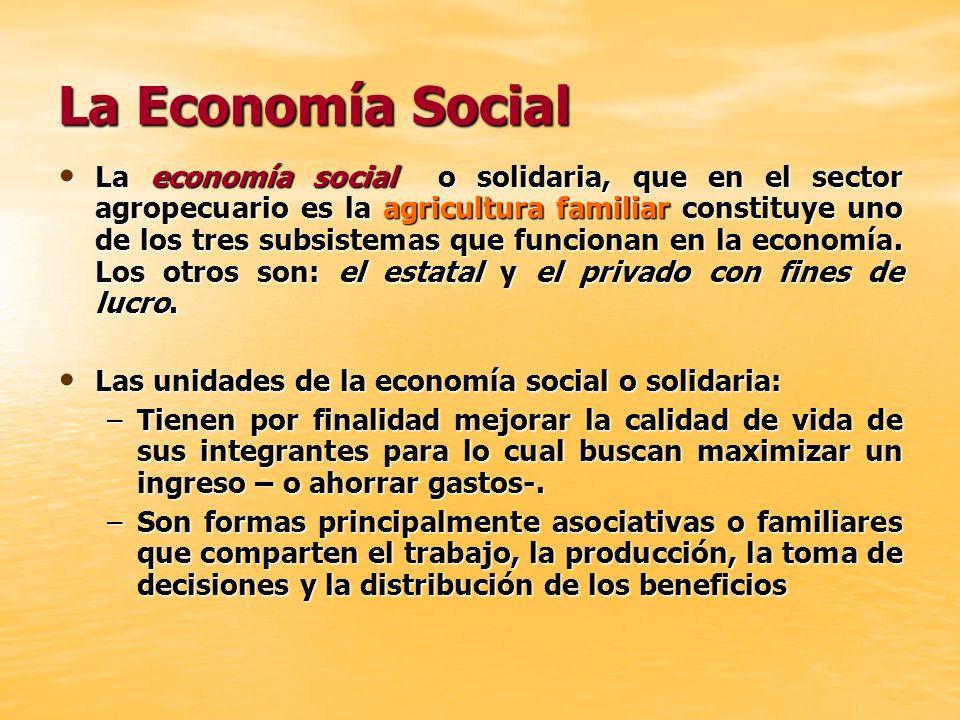 La Economía Social La economía social o solidaria, que en el sector agropecuario es la agricultura familiar constituye uno de los tres subsistemas que