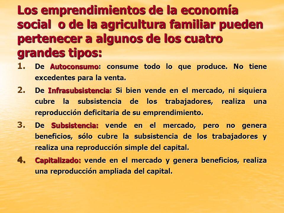 Los emprendimientos de la economía social o de la agricultura familiar pueden pertenecer a algunos de los cuatro grandes tipos: 1. De Autoconsumo: con