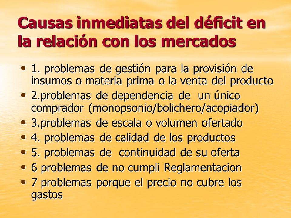 Causas inmediatas del déficit en la relación con los mercados 1. problemas de gestión para la provisión de insumos o materia prima o la venta del prod