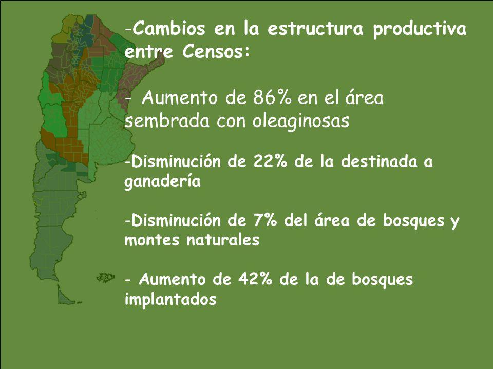 -Cambios en la estructura productiva entre Censos: introducción de la soja transgénica - La soja creció de 37 mil ha a 11 millones (hoy está en 16.000 mill) -Proporciona 45 mill de ton anuales (el 50% de la prod.agraria del pais) -Ocupa el 60% de la sup.