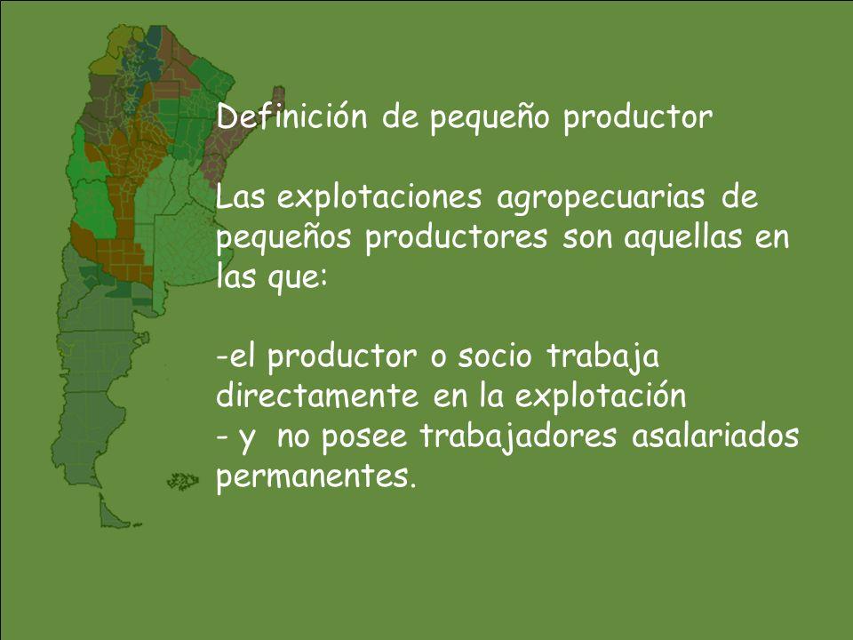 EMPLEO EN EL SECTOR AGROPECUARIO Por regiones: Total del país -25% Pampeana -34% NOA - 8% NEA -25% Cuyo -12% Patagonia -24%