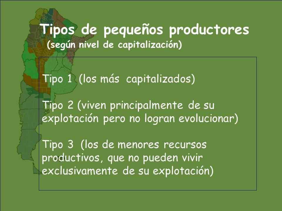 Aporte al empleo total agropecuario por regiones El mayor aporte de los PP se da en las regiones donde son más importantes en el total de EAP Fuente: IICA con datos de INDEC.