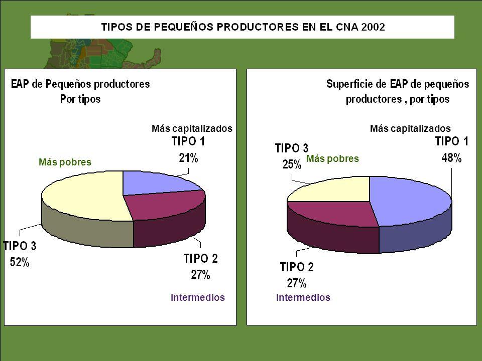 Por regiones, un 27% de PP se encuentra en Pampeana, pero el 50% se concentra en la Mesopotamia, Monte Árido, Chaco Húmedo y Valles del NOA.