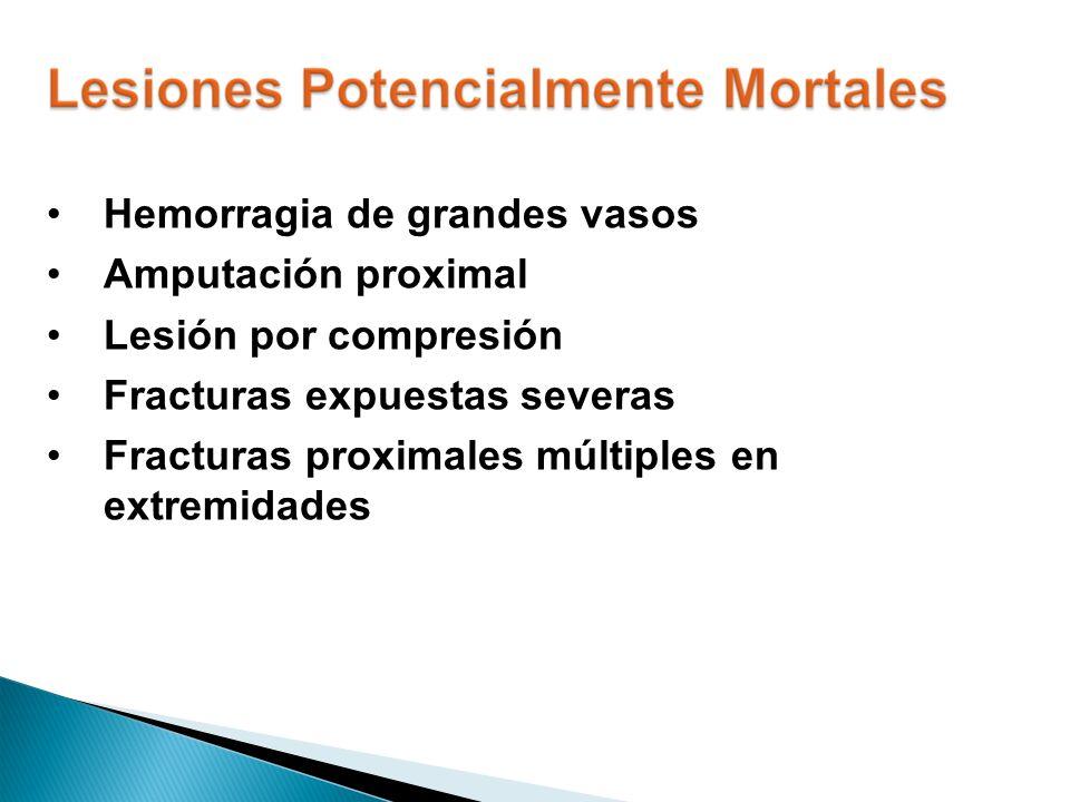 Hemorragia de grandes vasos Amputación proximal Lesión por compresión Fracturas expuestas severas Fracturas proximales múltiples en extremidades
