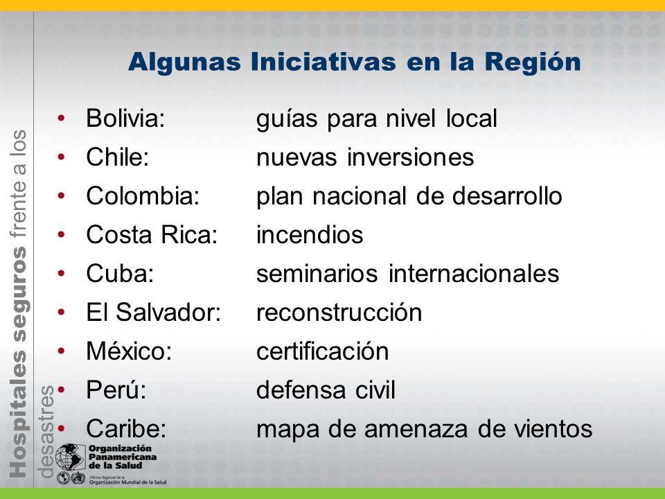 Hospitales seguros frente a los desastres Algunas Iniciativas en la Región Bolivia: guías para nivel local Chile:nuevas inversiones Colombia:plan naci
