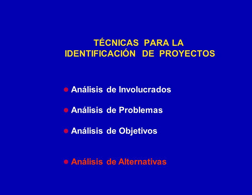 TÉCNICAS PARA LA IDENTIFICACIÓN DE PROYECTOS Análisis de Involucrados Análisis de Problemas Análisis de Objetivos Análisis de Alternativas