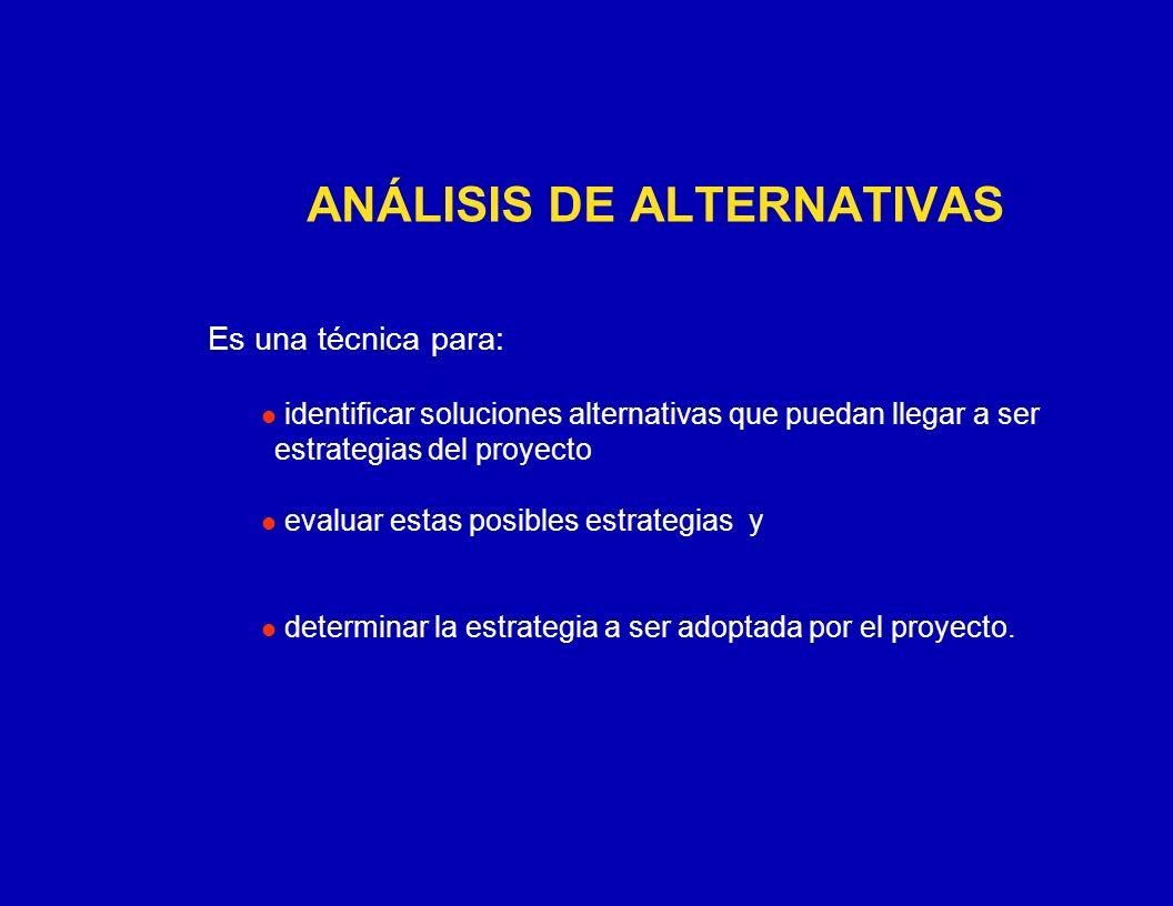 ANÁLISIS DE ALTERNATIVAS Es una técnica para: identificar soluciones alternativas que puedan llegar a ser estrategias del proyecto evaluar estas posib