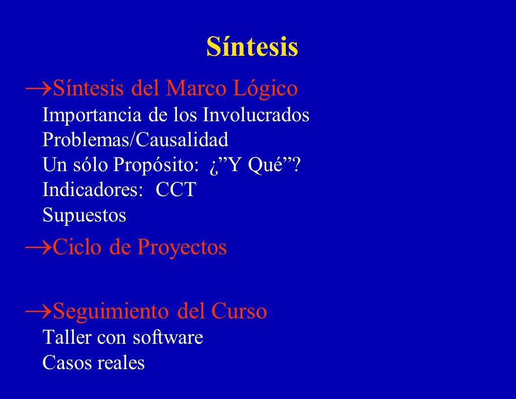 Síntesis Síntesis del Marco Lógico Importancia de los Involucrados Problemas/Causalidad Un sólo Propósito: ¿Y Qué? Indicadores: CCT Supuestos Ciclo de
