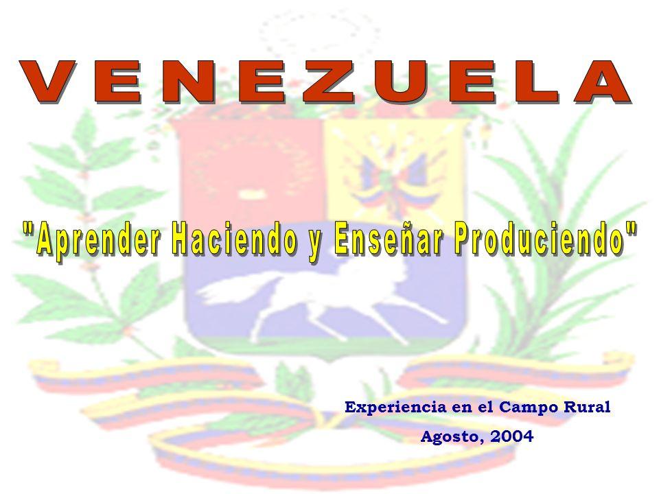 Experiencia en el Campo Rural Agosto, 2004