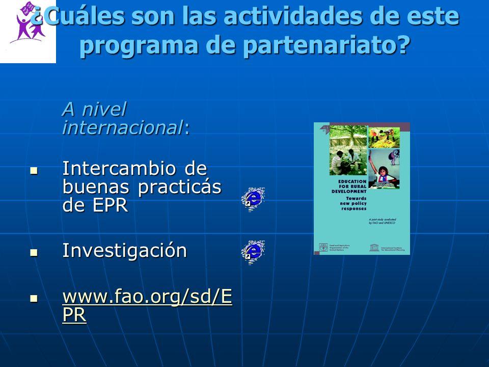 ¿Cuáles son las actividades de este programa de partenariato.