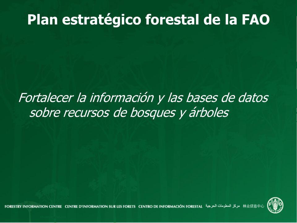Plan estratégico forestal de la FAO Fortalecer la información y las bases de datos sobre recursos de bosques y árboles