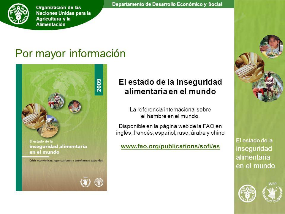 14 The State of Food Insecurity in the World Departamento de Desarrollo Económico y Social Organización de las Naciones Unidas para la Agricultura y la Alimentación El estado de la inseguridad alimentaria en el mundo La referencia internacional sobre el hambre en el mundo.