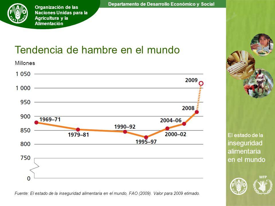 3 The State of Food Insecurity in the World Departamento de Desarrollo Económico y Social Organización de las Naciones Unidas para la Agricultura y la Alimentación El estado de la inseguridad alimentaria en el mundo Fuente: El estado de la inseguridad alimentaria en el mundo, FAO (2009).
