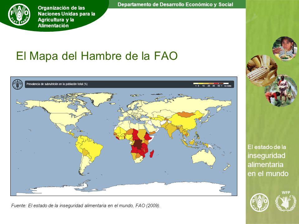 5 The State of Food Insecurity in the World Departamento de Desarrollo Económico y Social Organización de las Naciones Unidas para la Agricultura y la Alimentación El estado de la inseguridad alimentaria en el mundo El Mapa del Hambre de la FAO Fuente: El estado de la inseguridad alimentaria en el mundo, FAO (2009).